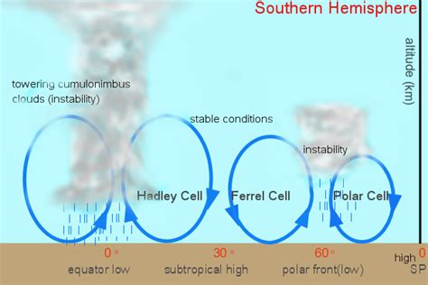 What is the Tricellular model|The Geo Room
