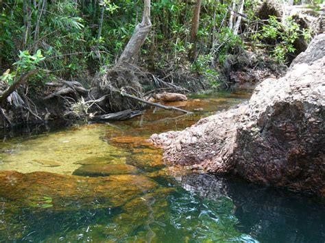 Visit to Buley Rockhole in Litchfield National Park in