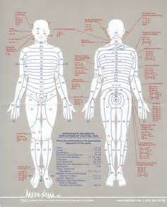 Placement Electrodes Compex SPORT | Other | Pinterest