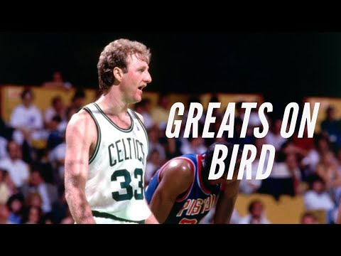 Talking Larry the Bird for Android - Download